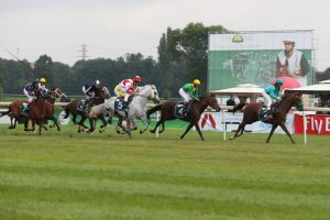 Poland's Sluzewiec Horse Race Track to host Sheikh Zayed Bin Sultan Al Nahyan Cup tomorrow