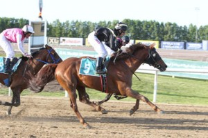 Read more about the article Blog Horse Reporter: Bachi Bouzouk has Friday 13th Good Luck at Sweden's Malmo Jagercro
