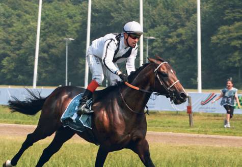 You are currently viewing Guld News : All eyes on in-form Muqatil Al Khalidiah