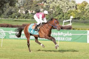 Gulf News: Exciting run expected in France today