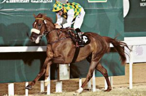 Read more about the article Gulf News: Naseem wins UAE Arabian Derby