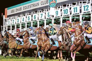 Gulfnews.com : Purebred Arabian racing in focus as season gets under way