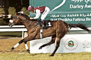 Gulfnews.com : Trio score double in Abu Dhabi