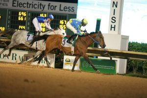 HH Sheikh Mansoor Festival enables historic debut for Arabian horse racing in Monmouth Park