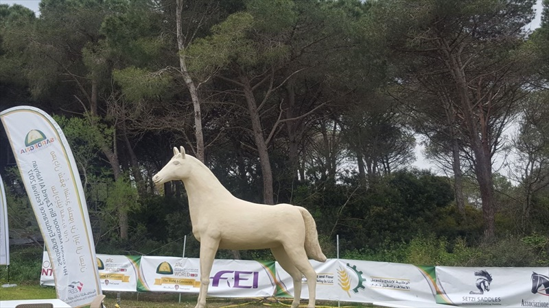 You are currently viewing HH Sheikh Mansoor Festival Endurance Rides in Sardinia on Saturday