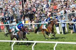 HH Sheikh Mansoor Festival races feature in Swedish National Day meeting