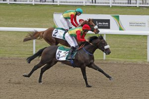 Read more about the article HH Sheikh Mansoor Festival's premier races attract top runners
