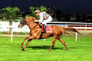 HH Sheikh Mansoor's horses dominate Toulouse races