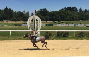 HH Sheikh Mansoor's Yaraa wins in France
