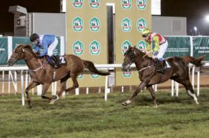 Jockey partners Boss Professor in the thoroughbred concluding 1,400-metre maiden