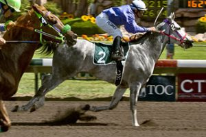 La Jest A Flash goes wire to wire in the Wathba Stud Farm Cup in Fresno, California
