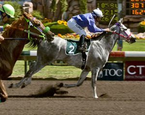 Read more about the article La Jest A Flash goes wire to wire in the Wathba Stud Farm Cup in Fresno, California