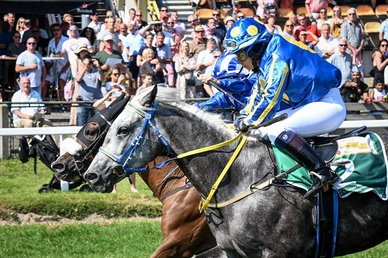 Lightning Bolt wins Zayed Cup in The Netherlands
