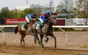 Read more about the article Macallan wins Wathba Stallions Cup in Sweden