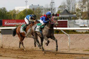 Macallan wins Wathba Stallions Cup in Sweden