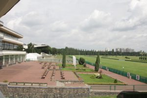 Middle East Online: 15 horses vie for Zayed Cup in Warsaw