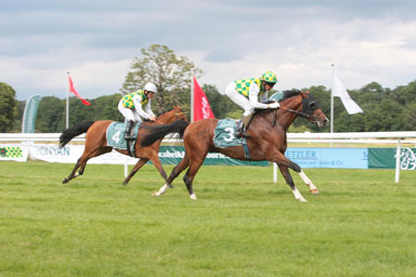 You are currently viewing Middle East Online : Sheikh Mansoor horses in 1-2 finish in Sheikh Zayed Cup race in Frankfurt.