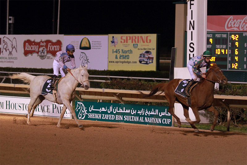 You are currently viewing Quality field for Sheikh Zayed Cup in Pleasanton as Sheikha Fatima Championship makes debut