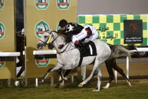 THE Abu Dhabi Equestrian Club racecourse will witness, Al Wathba Stud Farm for Private Owners race, the second race in the series of the ADACH Club's His Highness Sheikh Mansoor Bin Zayed Al Nahyan Global Flat racing