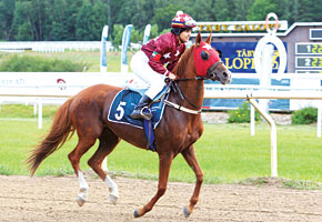 Read more about the article Top jockeys in fray for Sheikha Fatima Ladies World Championship