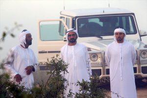 UAE riders sweep top three spots Al Mazroui wins National Day Endurance Cup