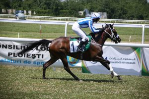 UK's Deniel wins HH Sheikha Fatima race in Bucharest