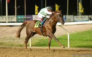 Read more about the article Wathba Stallions Sprint Cup (Group 3) in Malmo, Sweden