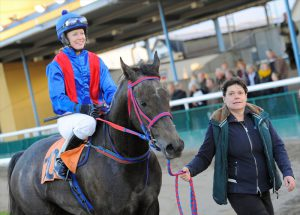 Read more about the article Wathba Stud Farm Cup (Group 3) in Sweden Pilroth strikes on Macallan for second year in-a-row