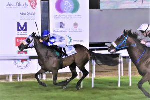 "Al Wathba Stallions Cup ""Sunday"" 11/15/2020, at the Abu Dhabi Equestrian Club Race Track."