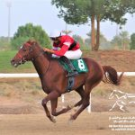 Al Wathba Stallions Cup, Saturday 11/14/2020, at Al Ain Race Track
