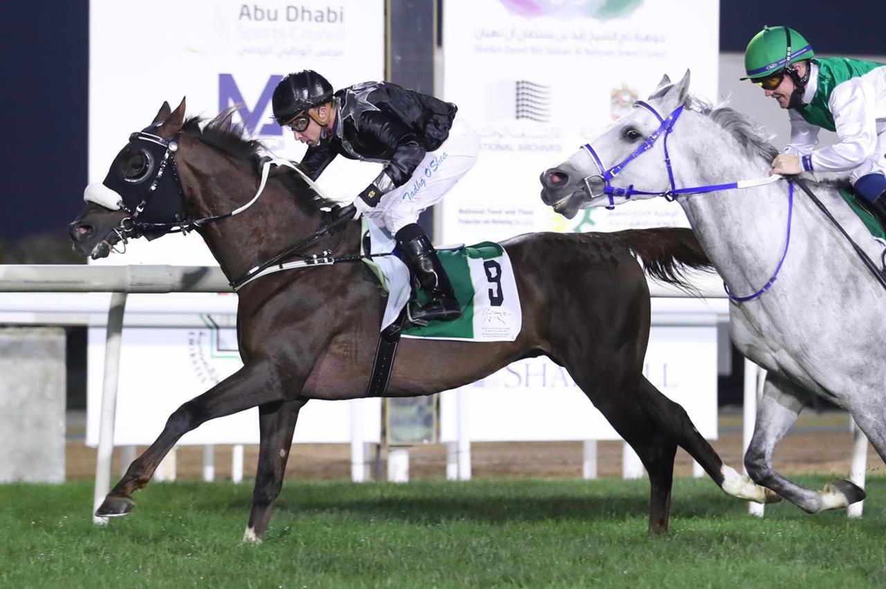"""Abahi"" wins the Wathba Stallions Cup on February 14 2021 at Abu Dhabi Racecourse"