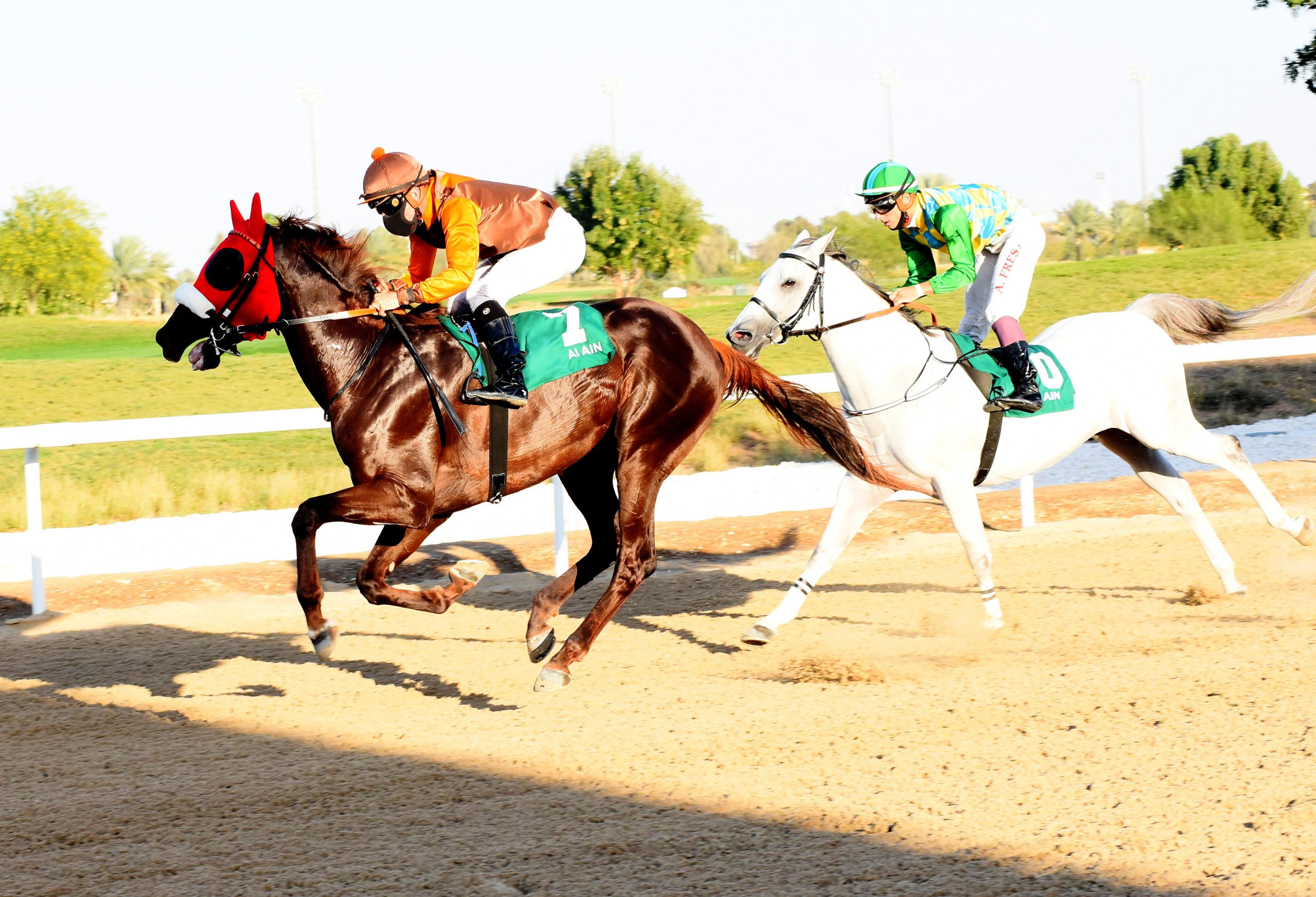 """Asif"" wins the Wathba Stallions Cup on February 12, 2021 at Al Ain Racecourse"