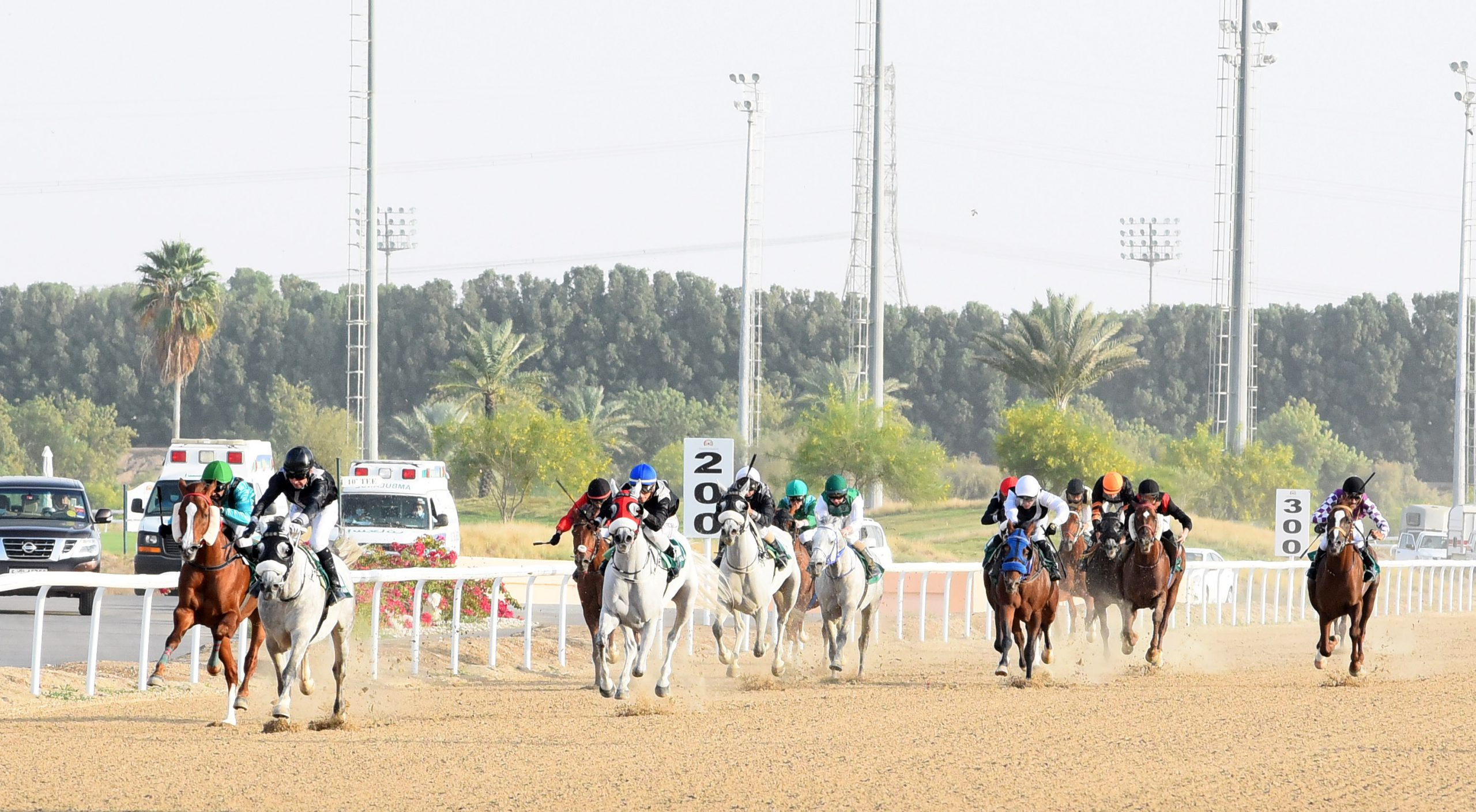"""""""Yahawa"""" is the champion of Round 10 of the Al Wathba Cup in Al Ain"""